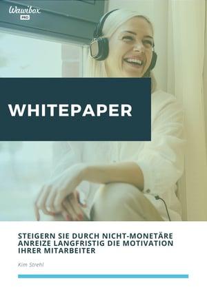 Whitepaper_ Nicht-monetäre Anreize
